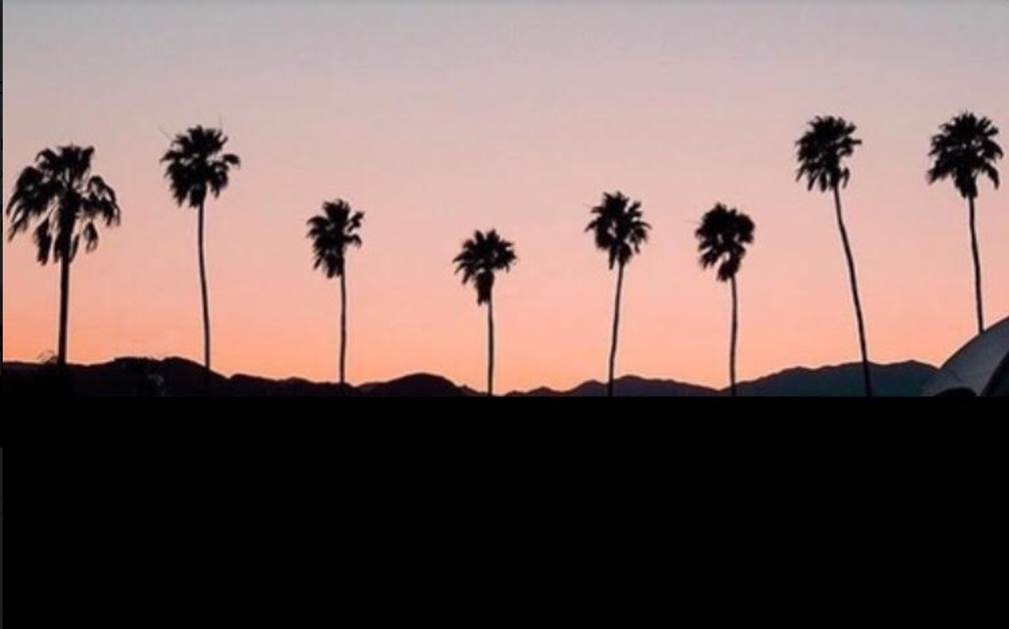 sunset, palm trees, and sky image