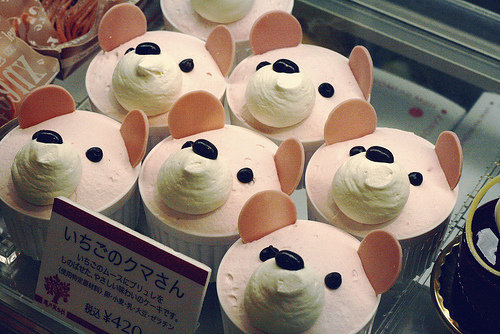bear, cute, food, japan, kawaii - inspiring picture on Favim.com