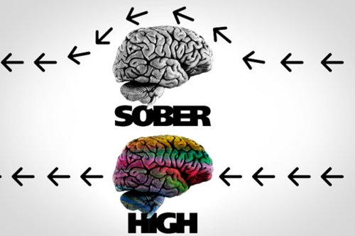 Sober-vs-high_large
