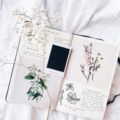 article, journal, and bullet journal image