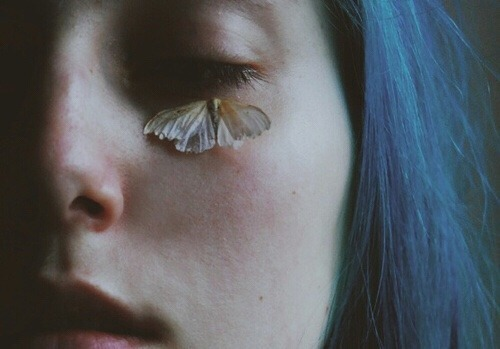 butterfly, blue, and grunge image
