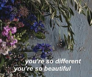aesthetic