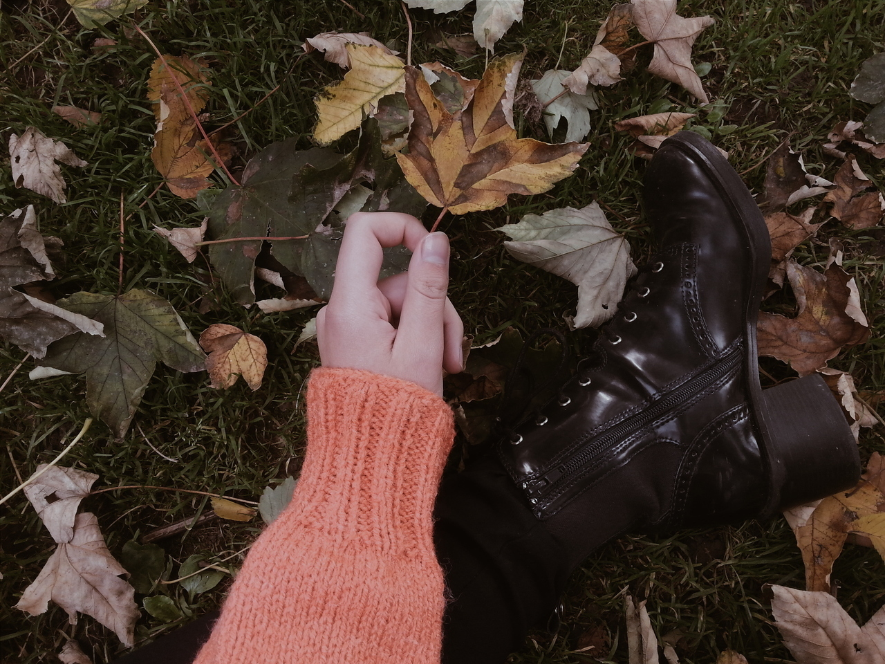 aesthetic, fall, and article image