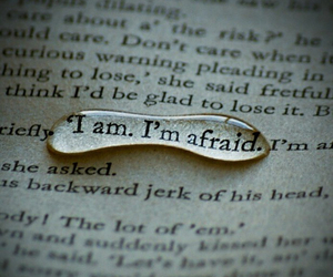 afraid, quotes, and words image