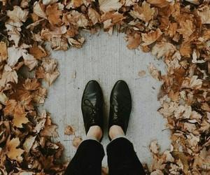 article, wanderlust, and concealer image
