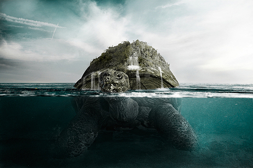 Create-an-surreal-island-turtle-photo-manipulation_large