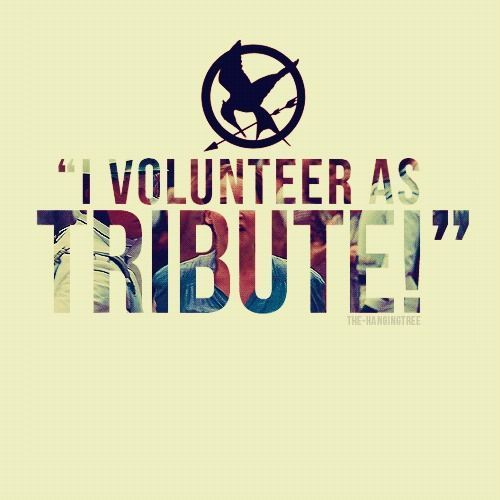Katniss-i-volunteer-as-tribute-the-hunger-games-30924039-500-500_large