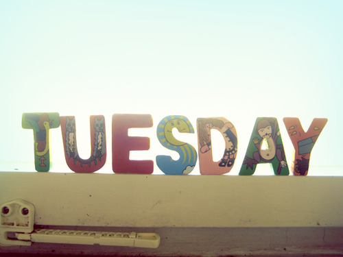 Bright-tuesday36_large