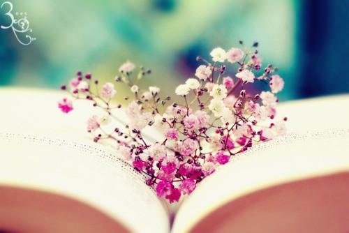 Book_flowers_heart__scene-d360fd40c1b99a321bff9feea7c4ea6e_h_large