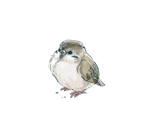 Art-bird-cute-drawing-illustration-favim.com-427542_large