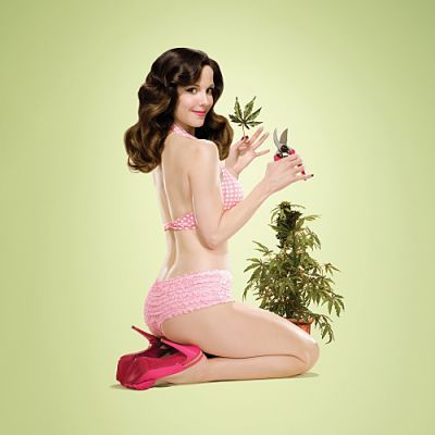 Watch-weeds-season-6-episode-4-online-free_large