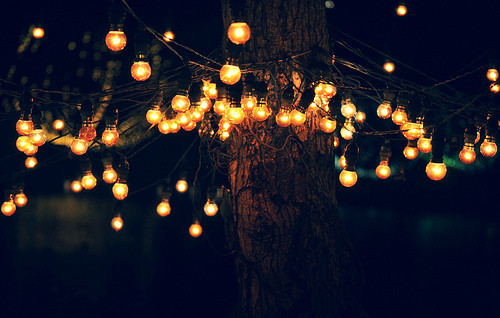 Trees_lights_light_tree_night_paradise-170204a31085918f46775d08270ddf92_h_large