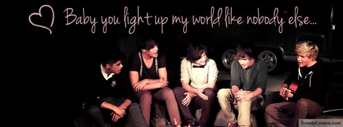 Beautiful_one_direction_facebook_cover_1338443599_large