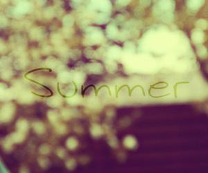 summer photography