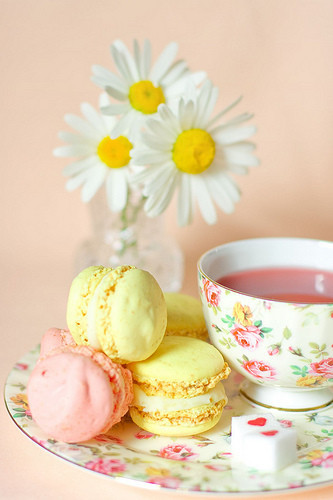 Food_food_art_macaroons_photography_teatime_cups-b79a848a4baf4fa714348557c6244c32_h_large