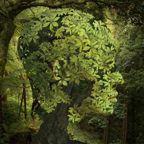 1_surreal-artworks-by-igor-morski-500x500_large