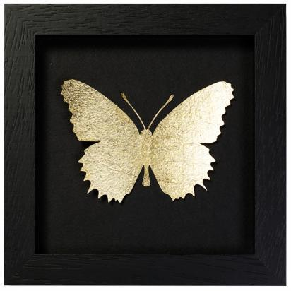 2012_06_21_10_53_09_gold-framed-butterfly_large