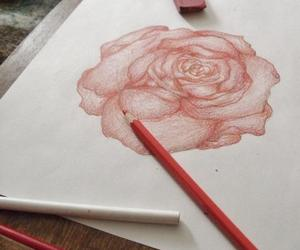 rose draw red love art