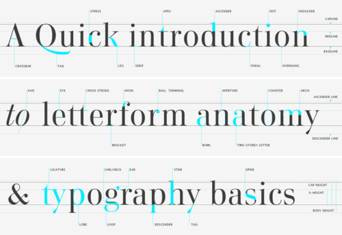 Type-glossary-letterform-anatomy_large
