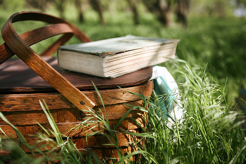 Books_grass_picnic_beautiful_field_light-a9f54158597f76d5ae01251e01c21ee1_h_large
