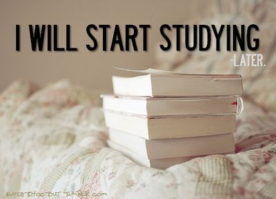 Iwillstartstudying_.._later_large_large