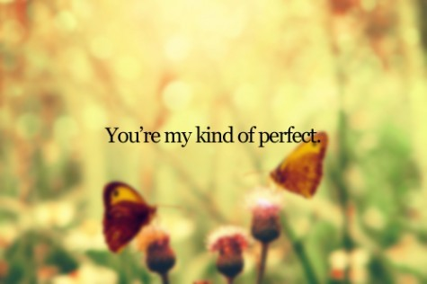 You-re-my-kind-of-perfect-353188-475-316_large