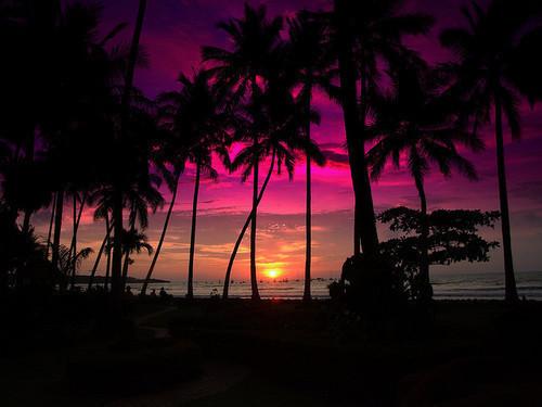Beach-beautiful-coast-dream-fashion-favim.com-451499_large
