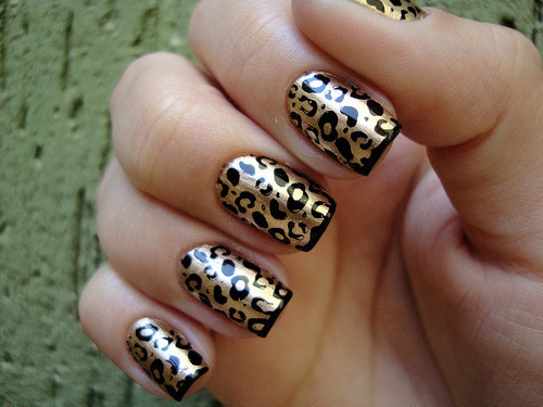 Animal-print-cute-girl-girly-grr-favim.com-453457_large
