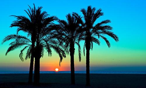 3820d1177144571-sale-el-sol-por-mataro-amanece_large_large