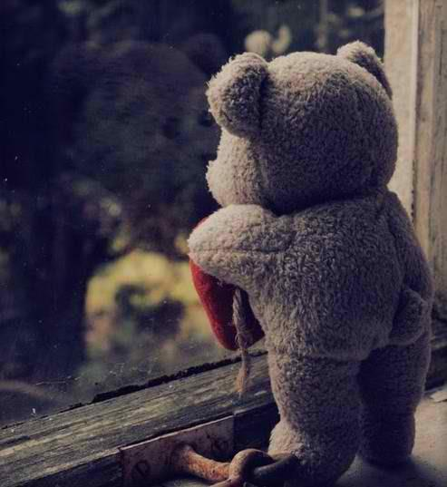 Bear-broken-heart-sad-favim.com-323991_large