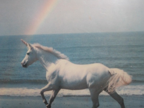 Rainbow-sea-unicorn-favim.com-454264_large