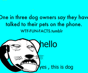 so true wtf fun facts