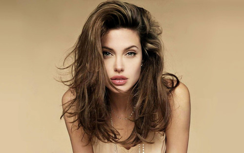 Angelina-jolie-313-angelina-jolie-celebrites-femmes_large