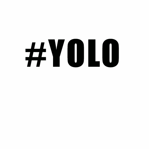 Yolo_20copy-500x500_large