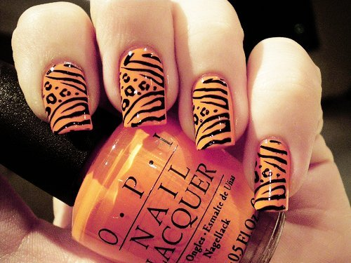 Animal-cute-girl-nail-nail-polish-favim.com-455457_large