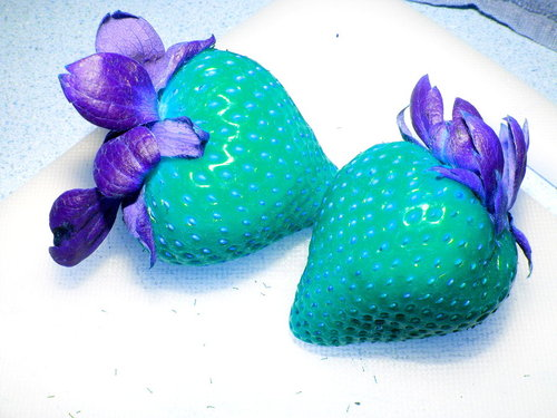 Blue_and_purple_strawberries_by_ambolovesyous17_large