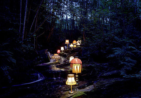 Night_things_darkness_forest_lamps_path-1bf1fc2a2ece0b47c70b20de4e1a2da1_h_large