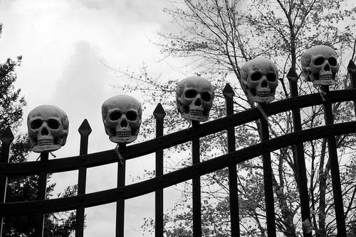 Black-and-white-photography-skull-favim.com-418242_large