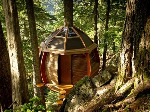 Treehouse-1_large