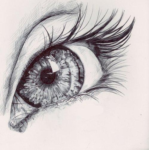 Eyes_eye_portrait_sketches___illustration-4385a63be17e392dd233c56428604938_h_large