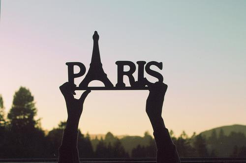 call for 1 intern  3 months paid internship in paris