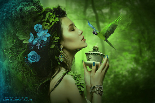 Fantasy_fancy_green_tea_birds_fairy-002fea660d1b16b4ff8ea5d50d86f158_h_large
