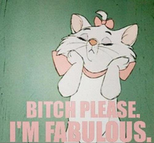 Aristocats-bitch-please-bow-cute-funny-favim.com-460423_large
