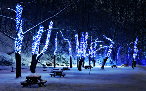 Lights_in_the_park_hd_widescreen_wallpapers_1280x800_large