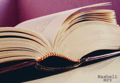 Book__by_nashelimrz-d4mp836_large