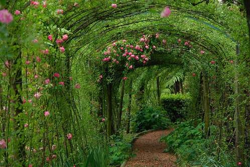 Secret Garden Ideas best 25 secret gardens ideas on pinterest Secret Garden Ideas