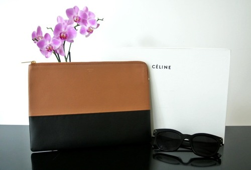 Celine_clutch_large