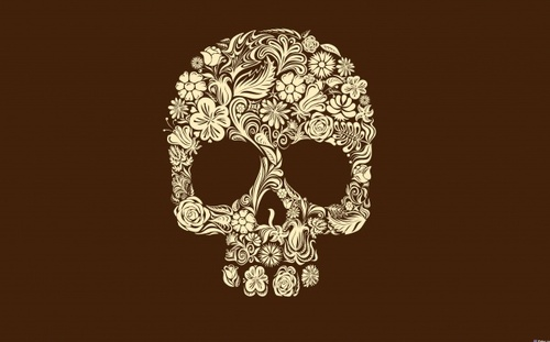 Abstraction-minimalism-skull-favim.com-481531_large