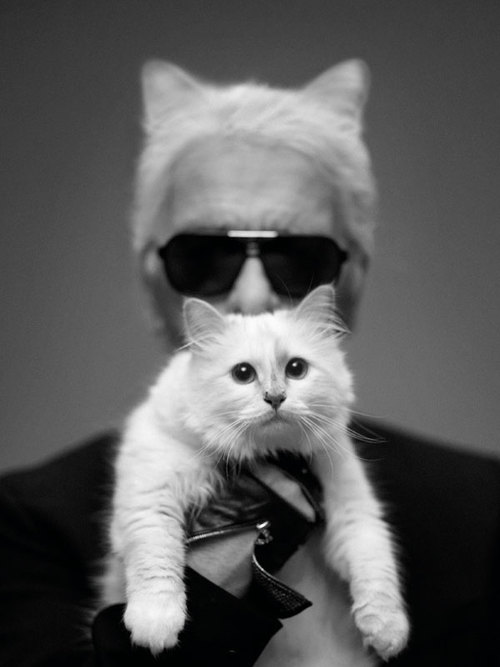 Choupette Lagerfeld Interview - Karl Lagerfeld Quotes on Cat Choupette - Harper's BAZAAR