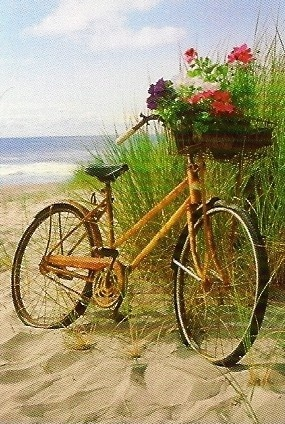 Summer Love / Dune bike